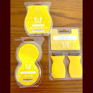Melts wax, car freshener clips and Scentsy pods